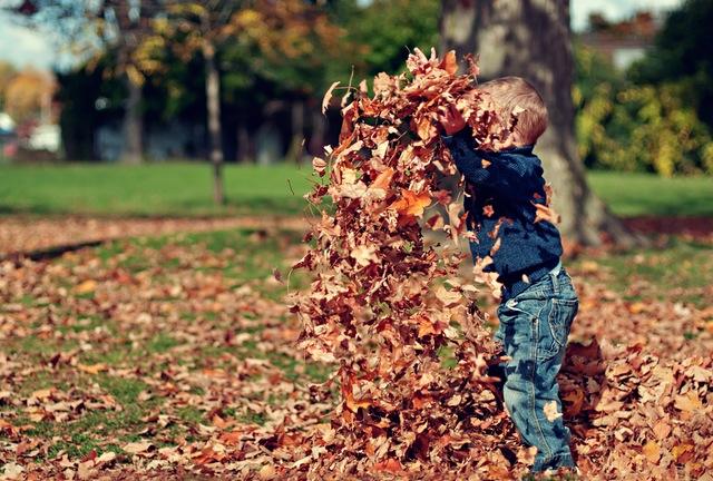 jongen-met-herfstbladeren